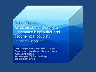 OceanCubes :  An observatory network to  understand biophysical and  geochemical coupling