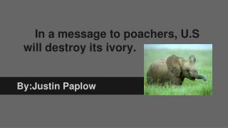 In a message to poachers, U.S will destroy its ivory.