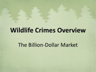 Wildlife Crimes Overview