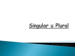 Singular u Plural