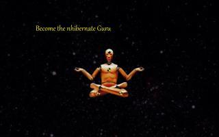 Become the nhibernate Guru