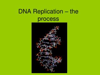 DNA Replication � the process