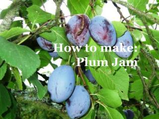 How to make:  Plum Jam