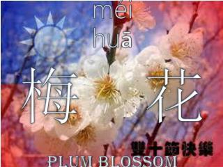 méi huā 梅  花 Plum Blossom