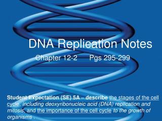 DNA Replication Notes
