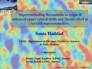 Sonia Haddad LPMC,  Département  de Physique,  Faculté  des Sciences de  Tunis (Tunisia)