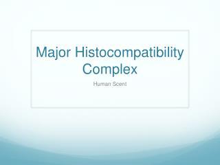 Major  Histocompatibility  Complex