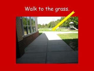 Walk to the grass.