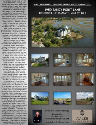 Aviles Real Estate  Brokerage Susan  Aviles 843-697-2383 Susan@Aviles-RealEstate