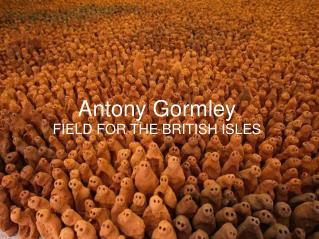 Antony  Gormley FIELD FOR THE BRITISH ISLES