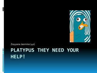 Platypus They need your help!