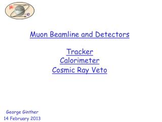 Muon  Beamline  and Detectors Tracker Calorimeter Cosmic Ray Veto