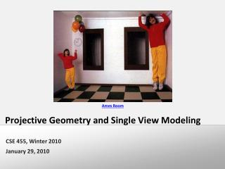 Projective Geometry and Single View Modeling