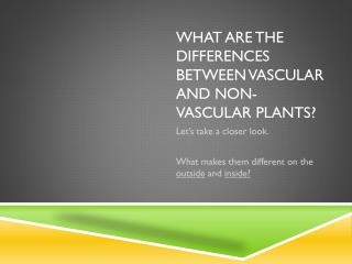 What are the differences between Vascular and non-Vascular Plants?
