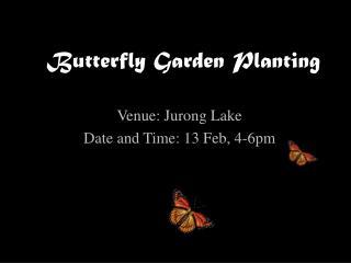 Butterfly Garden Planting