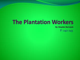 The Plantation Workers  By: Brayden Bernasek