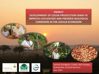 Lachua Ecoregion ,  Cobán , Alta  Verapaz . Guatemala, Central America. Nov 25th.