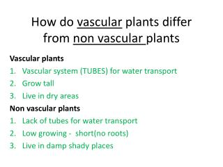 How do  vascular  plants differ from  non vascular  plants