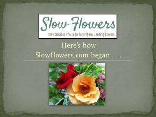 Here's how  Slowflowers  began . . .