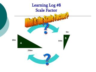 Learning Log #8  Scale Factor