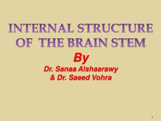 INTERNAL STRUCTURE OF  THE BRAIN STEM By  Dr.  Sanaa Alshaarawy &  Dr. Saeed  Vohra