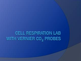 Cell  respiration  LAB with  Vernier CO 2 Probes