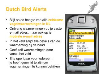 Dutch Bird Alerts