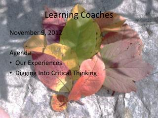 Learning Coaches