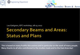 Secondary Beams and Areas: Status and Plans