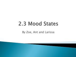 2.3 Mood States