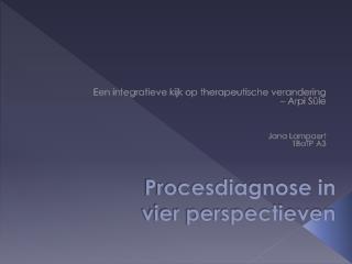 Procesdiagnose in vier perspectieven