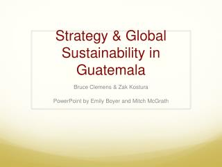 Strategy & Global  Sustainability in Guatemala