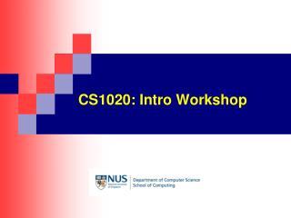 CS1020: Intro Workshop
