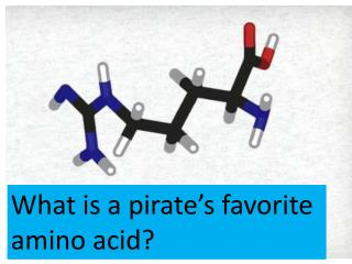 What is a pirate's  favorite  amino  acid?
