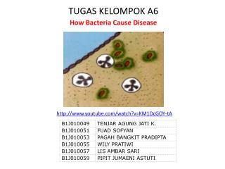 TUGAS KELOMPOK A6