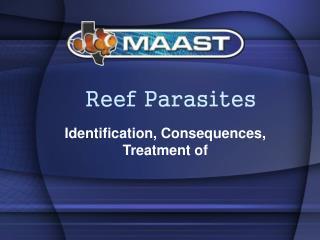Reef Parasites