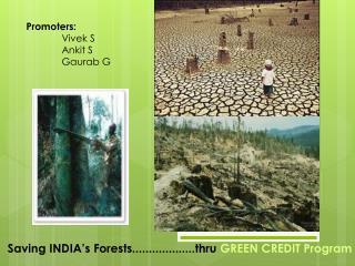 Saving INDIA's Forests...................thru  GREEN CREDIT Program