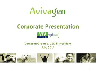 Corporate Presentation Cameron  Groome , CEO & President July, 2014