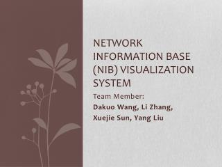 Network Information Base (NIB) visualization system