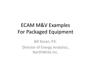 ECAM M&V Examples For Packaged Equipment