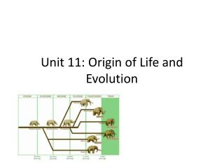 Unit 11: Origin of Life and Evolution