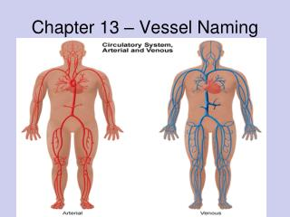 Chapter 13 – Vessel Naming