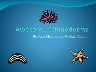 Awesome Echinoderms