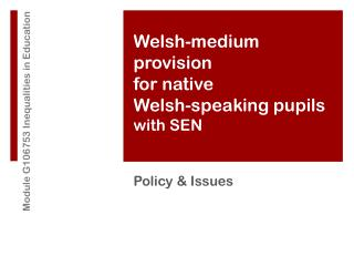 Welsh-medium provision for native  Welsh-speaking pupils  with SEN