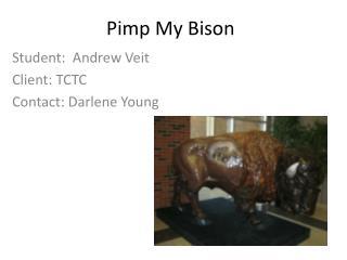 Pimp My Bison