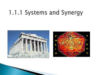 1.1.1 Systems and Synergy