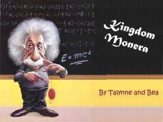 Kingdom  Monera