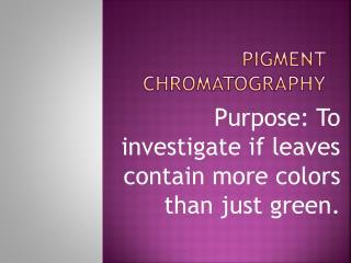Pigment Chromatography