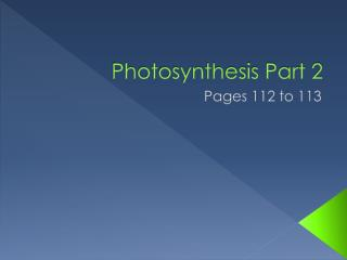 Photosynthesis Part 2