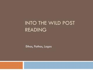 Into the Wild Post Reading